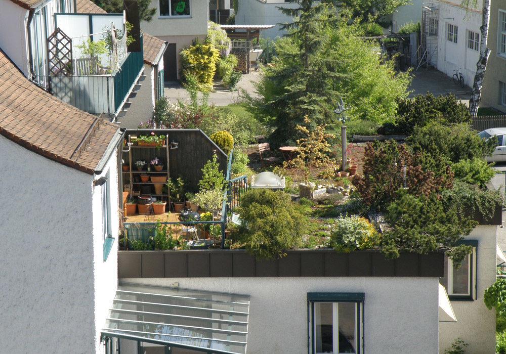 Dachbegrünung am Mehrfamilienhaus, Dachterrasse.