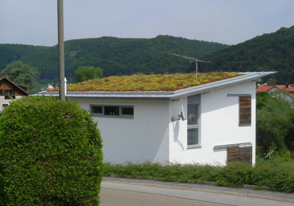 Dachbegrünung auf einem kleinen Einfamilienhaus mit Flachdach.