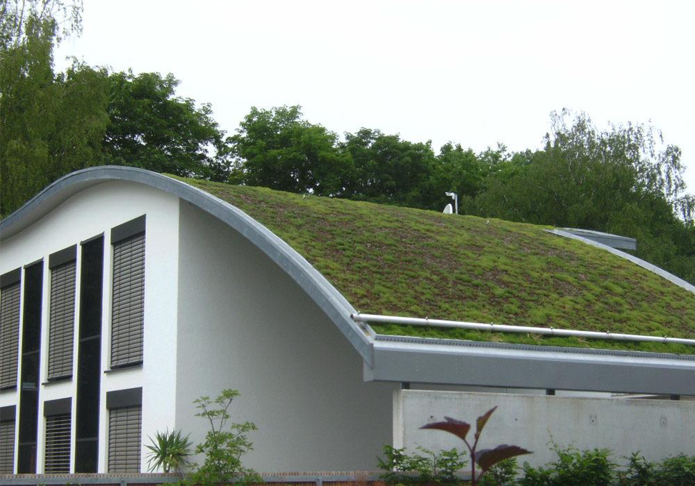 Dachbegrünung am Einfamilienhaus, Hausdach in geschwungener Form.