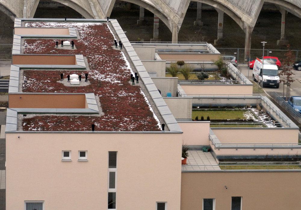 Flachdach mit Dachterrassen auf Mehrfamilienhäusern.